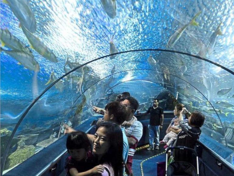 aquaria-klcc-1-1